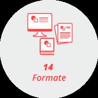 """Piktogramm """"14 Formate"""": Computerbildschirm, Buch, lose Blätter"""