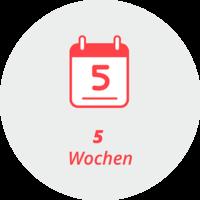"""Piktogramm """"5 Wochen"""": ein Kalenderblatt mit der Aufschrift """"5"""""""