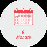 """Piktogramm """"6 Monate"""": ein Kalender"""