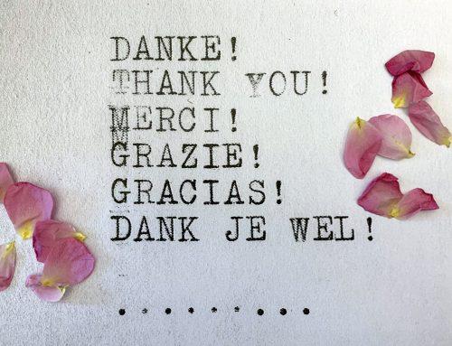 Danke an unsere tollen Übersetzer*innen: eine Huldigung